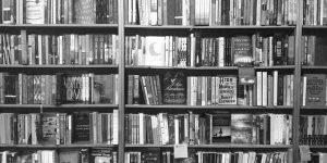 Country Bookshelf, Montana